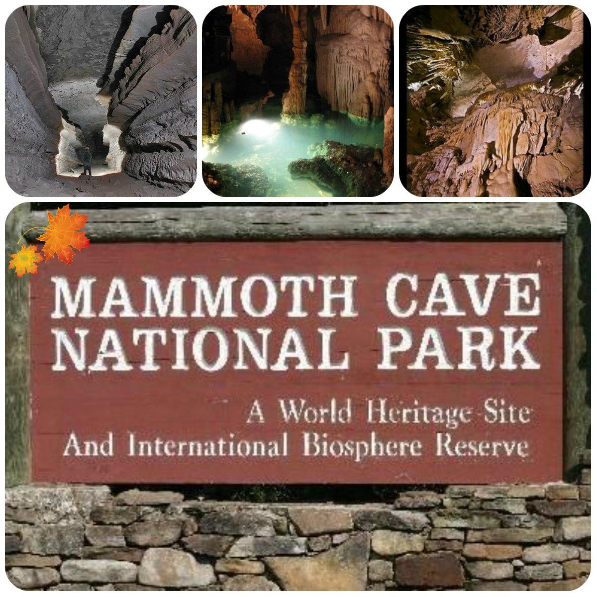 collage мамонт пещера