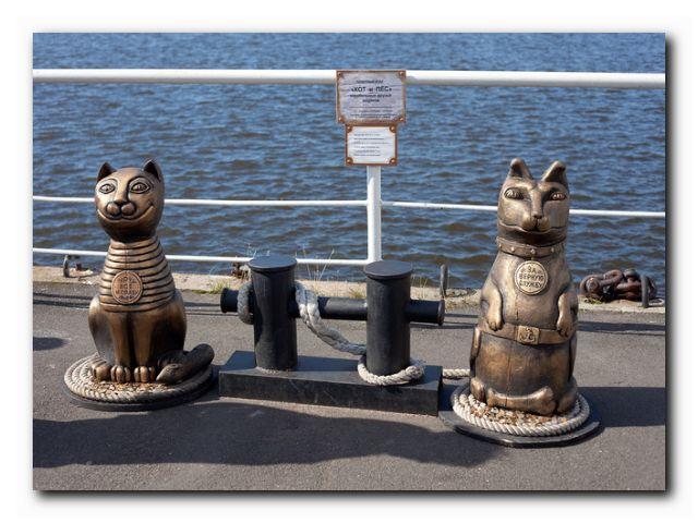 памятник коту фото