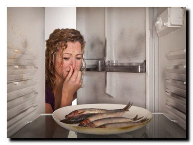 Как сделать чтобы не пахло из холодильника - 3dfuse.ru