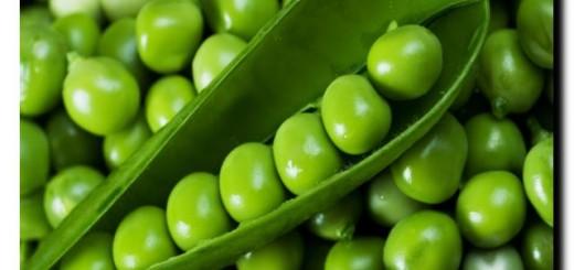 ощелачивающие организм продукты