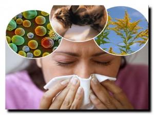 виды аллергии у взрослых