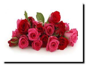 дарите друзьям цветы