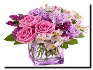 цветы без повода дарите