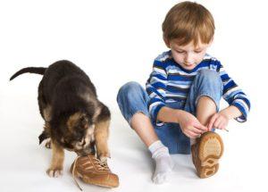 5 признаков качественной детской обуви