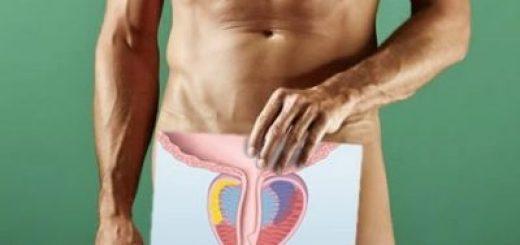 Расположение простаты зоны предстательной железы